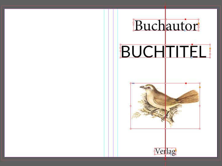 buch grafik